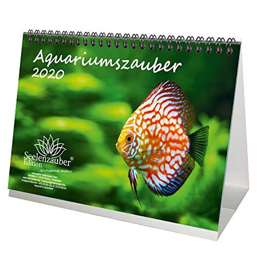 Aquariummagie DIN A5 tafelkalender 2020 dieren in het aquarium en onderwater - zeelmagie