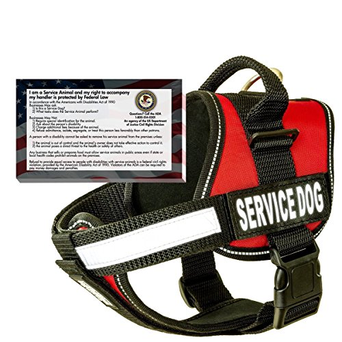 barkOutfitters Dog Vest Harness with 50 ADA Cards Kit, (22 - 28) Girth, Red
