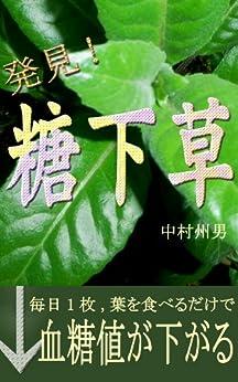 [中村 州男, 中村 江里]の毎日一枚、葉を食べるだけで血糖値が下がる「糖下草」発見!