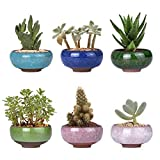 6 unids/set cerámica maceta lote mini cemento suculenta maceta bonsai hogar jardín decoración extraño plantador