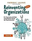 Reinventing Organizations visuell: Ein illustrierter Leitfaden sinnstiftender Formen der Zusammenarbeit - Frederic Laloux