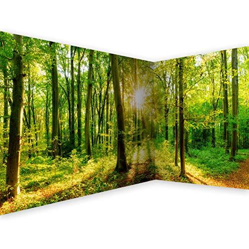 murando - Eckfototapete selbstklebend Wald 539x250 cm Tapete Wandtapete Klebefolie Dekorfolie Tapetenfolie Wand Dekoration Wandaufkleber Wohnzimmer Landschaft Natur grün Baum b-B-0383-a-a