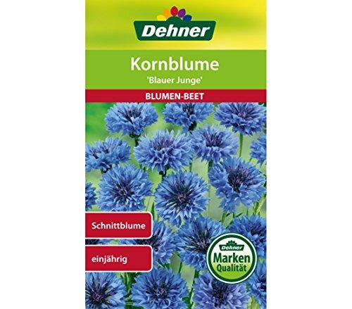 Dehner Blumen-Saatgut, Kornblume,