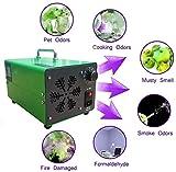 Generador De Ozono Portátil, O3 Purificadores De Aire De Ozono Purificador De Aire Esterilizador Máquina De Ozono + Acero Inoxidable, Para Hogar, Oficina, Barco, Automóvil, Hotel Y Granja,Verde