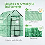 Vivosun 57x57x77-inch mini walk in green house with window and anchor plant garden hot house 2 tiers 8 shelves 11 multi-shelves, large space- crafted with 8 wired shelves, overall dimension:57x57x77-inch, our vivosun green house is large enough for starting seed, sprouting young plants, blooming flowers and cultivating fresh vegetables; 3 tiers and different height between each shelf provide a possibility to grow both small and large plants side by side roll-up entrance & windows- zippered roll-up entrance at the front provides an easily access to the greenhouse and a bigger operating space; 2 side windows bring a better air circulation of the green house, even if in hot weather, your lovely plants can breath fresh air; and the custom meshes on the window effectively isolate the pests from harming plants high-quality & long life time pe cover- our vivosun greenhouse is double-stranded edge banding, making the cover more tough and more durable; thanks to the anti-cold agent added in the cover, its lifetime is 3 months more than usual cover; in addition, our high-quality pe cover can prevent the harm from uv and bad weather but offering the best solar performance, which will nourish your plants very well
