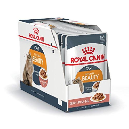 Royal Canin Alimento Gatto Intense Beauty, 12x85 g