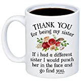 MyCozyCups Funny Gifts For Sister - If I Had A Different Sister I Would Punch Her In The Face And Go...