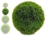 TIENDA EURASIA® Bola Artificial de Decoracion - Seto Artificial Decorativo - Ideales para Interiores y Exteriores (Verde, 22 cm)