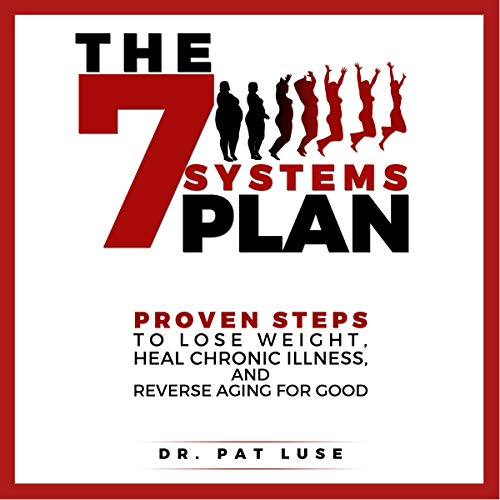 The 7 Systems Plan audiobook cover art