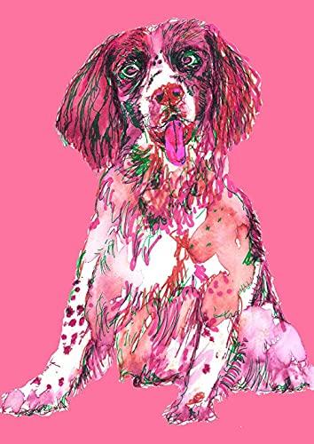 Xpboao Pintar por números - Springer Spaniel de Color Animal - Artesanía en Kit para Pintura al óleo sobre Lienzo. - para la decoración de la Pared del hogar - 40x50cm - Sin Marco