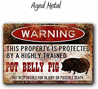 pot belly pig accessories