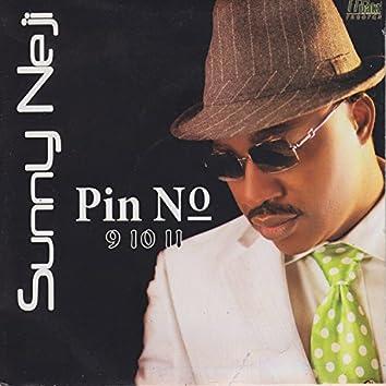 Pin No 9 10 11