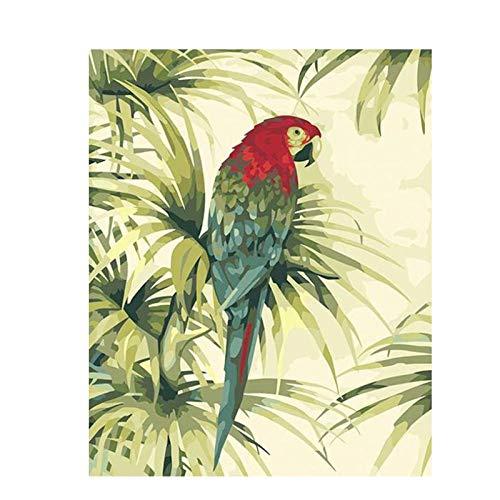 MULMF Kleurrijke vliegende papegaai verf linnenverf voor handmatig werk afbeelding wanddecoratie schilderij doek - 50x70cm zonder lijst