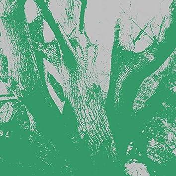 The Journey of the Treeman