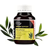 Best Naturals Olive Leaf Extracts - Comvita Olive Leaf Extract, Natural Cardiovascular Support, High Review