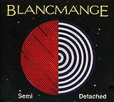 Songtexte von Blancmange - Semi Detached
