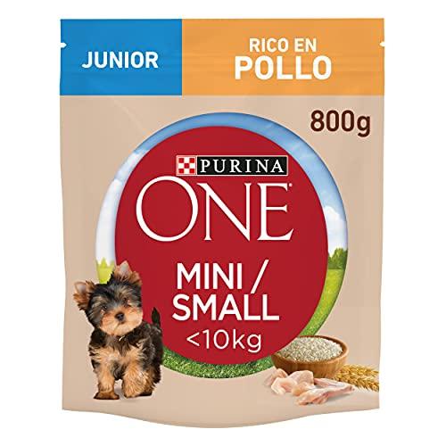 Purina One Mini croquetas para Perro Junior Rico en Pollo, con arroz, para Perros de hasta 10 kg, 8 Bolsas de 800 g Cada una. ⭐