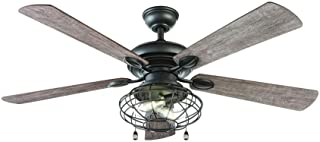 Home Decorators Collection Ellard 52 Inch LED Indoor Natural Iron Ceiling Fan