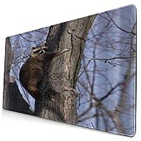 KIMDFACE 大型 マウスパッド 木を抱き締めるアライグマ 個性的 おしゃれ 柔軟 かわいい ゲーミングマウスパッド PC ノートパソコン オフィス用 デスクマット 滑り止め 特大 マウスマット