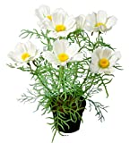 Artificielles.com – Cosmos Flores artificiales en maceta de 40 cm de altura, color crema