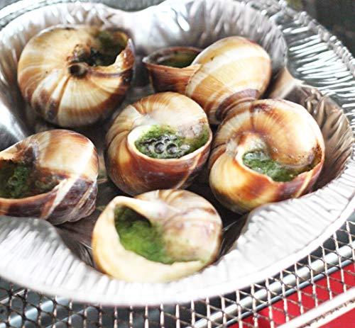 エスカルゴ 殻付き 6粒(サーモトレイ)フランス製