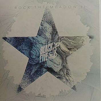 Rock the Meadow, Pt. 2