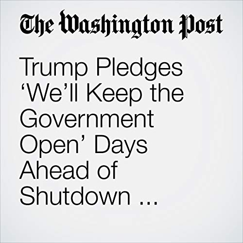 Trump Pledges 'We'll Keep the Government Open' Days Ahead of Shutdown Deadline copertina