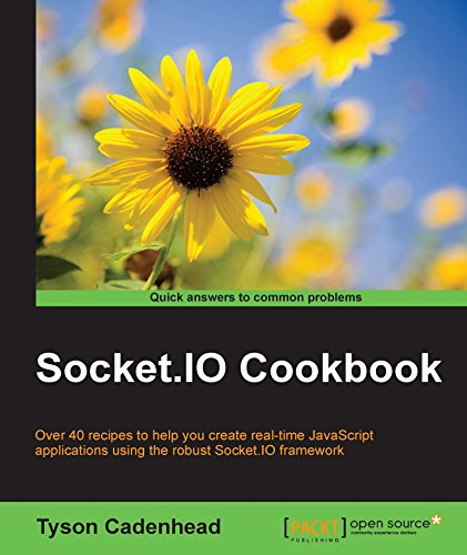 Socket.IO Cookbook (English Edition)