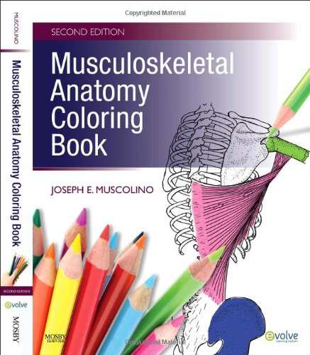 Easy You Simply Klick Musculoskeletal Anatomy Coloring Book 2e Download Link On This Page And Will Be Directed To The Free Registration Form