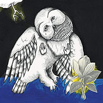 Magnolia Electric Co. (Deluxe Edition)
