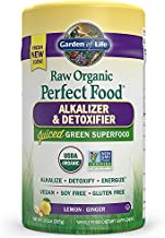 Garden of Life Perfect Food Organic Green Super Food - Alkalizer and Detoxifier 285g Powder