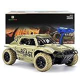 GizmoVine RC Coche 4WD Talla Grande Alta Velocidad Rock Crawler Vehículo 25KM/H 2.4Ghz Control...