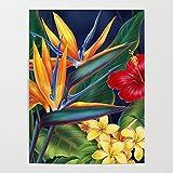 Xpboao Pintar por números - Flor Tropical - Pintura al óleo de Lienzo Digital DIY Adultos Niños - Arte de decoración de Pared para el hogar - 40x50cm - Sin Marco