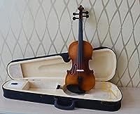 子供用 ヴァイオリン 初心者 入門モデル 誕生日プレゼント 9color 木製 ヴァイオリン 知育玩具 楽器玩具 子供用 D 1/8