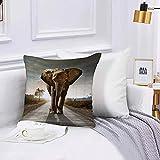 Lilatomer Funda de algodón 45 x 45 cm Arte de fotografía de Elefante Africano Sofá Throw Cojín Almohada Caso de la Cubierta para Sala de Estar 45x45cm