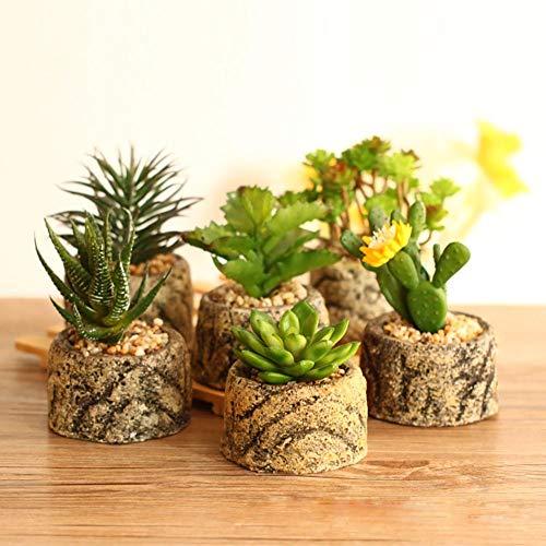 AMITD, vetplanten, potten, cactepotten, mini-bloempotten van bamboe, groen, 4-delige set