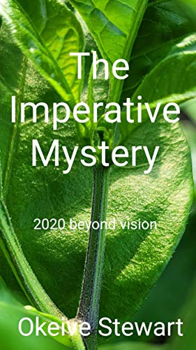 Imperative Mystery (English Edition)