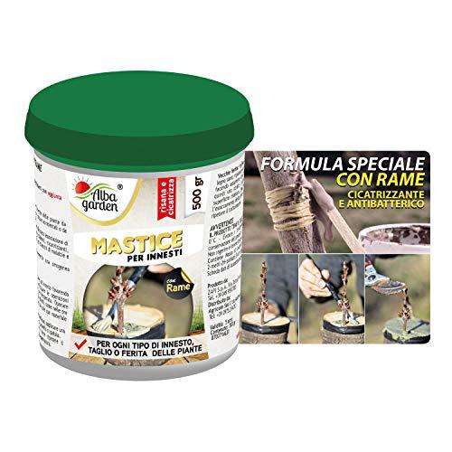 Albagarden - Mastice Per Innesti e Potature ++ CON RAME ++ Antibatterico Pasta Cicatrizzante Curativa Per Ferite Piante Alberi Arbusti Bonsai x 500 gr