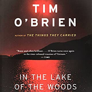 In the Lake of the Woods cover art