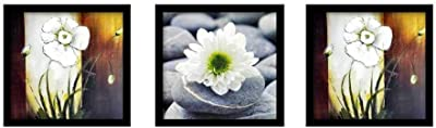 Suninow Flower Wall Painting with Frame   Wall Paintings for Living Room   Wall Painting Frames (Flower 3)