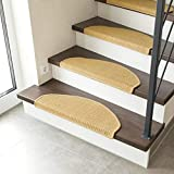 andiamo 290356 Odense Juego de 2 Alfombrillas Fibra Natural 100% sisal Resistente, Color Beige