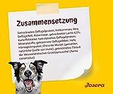 Josera Festival Hundefutter mit Lachs - 7