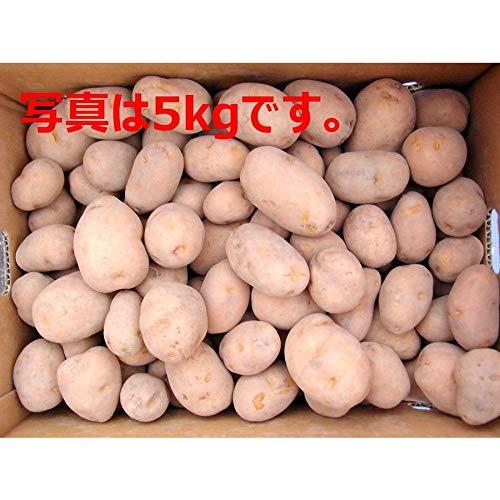 指定種苗検査合格品 じゃがいも 種芋 インカのめざめ (1)