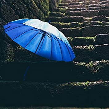 Gentle Rain & Nature Focus Recordings to Relax and Inspire