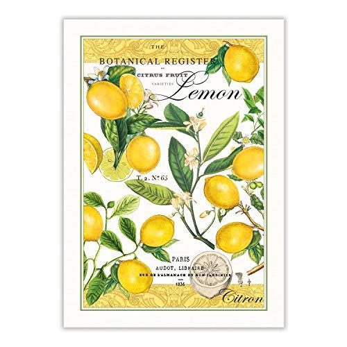 Michel Design Works Kitchen Dish Towel  Lemon Basil