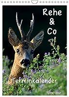 Rehe & Co / Planer (Wandkalender 2022 DIN A4 hoch): Wildlife Ruegen / Deutschland (Planer, 14 Seiten )