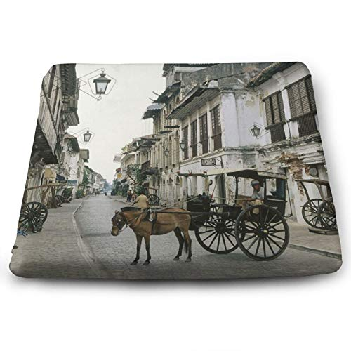 Soft Square Seat Cushion- Comfortable Memory Foam Chair Mat Pads for Home/Dining/Office/Living/Room/Floors- 15'' x 13.7'- Philippines Horse