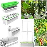 hydroponioc grow room