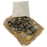 ONE (1) Pirate Booty Pouch Filled with Pyrite and Metal Pirate Treasure Coins - Shiny Gold and Silver Doubloon Replicas (PiratePouch1lb)
