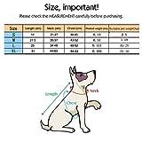 Zoom IMG-1 yizhet pettorina regolabile per cane